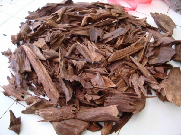 ROYAL OUD INCENSO vasetto 50 gr